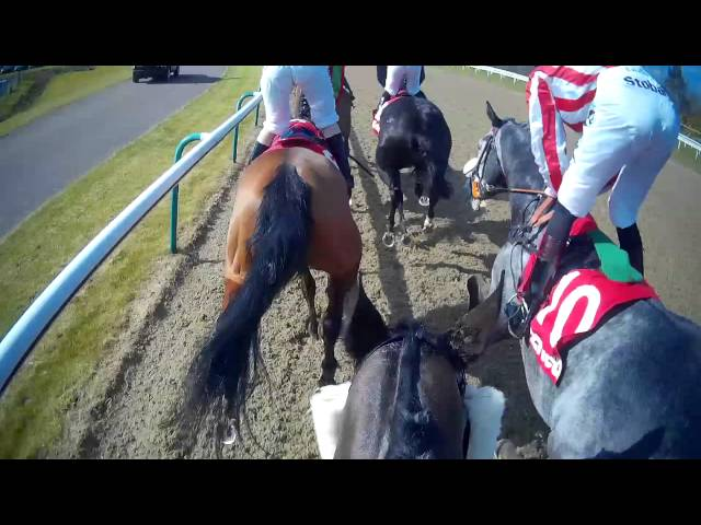 Pearl Castle – Dougie Costello Jockey Cam – Finals Day 2016