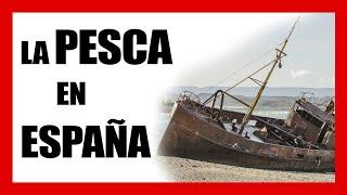 """""""EUROPA HACE LO QUE QUIERE"""" Entrevista a Ángel, pescador en el Mar Cantábrico."""