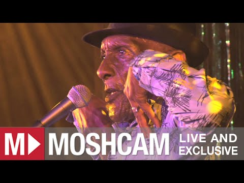 The Jolly Boys - Passenger (Iggy Pop) (Live at Sydney Festival) | Moshcam