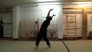 Betrunkenen Stil - Kung Fu Schule Stuttgart
