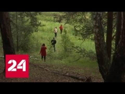 В Арамиле многодетным семьям выделили бесплатные участки на горе - Россия 24