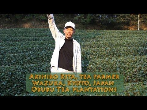 Kita Akihiro,  Kyoto Obubu Tea Plantations