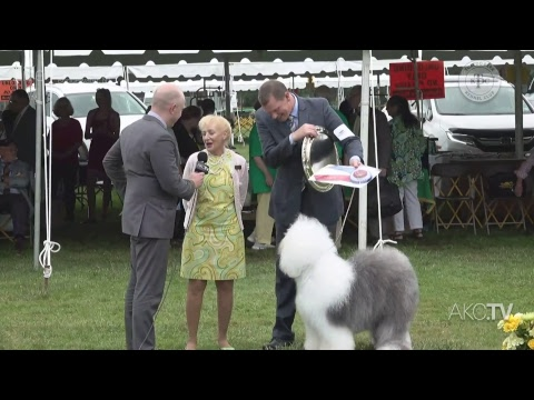 LIVE: Tuxedo Park Kennel Club All-Breed Show