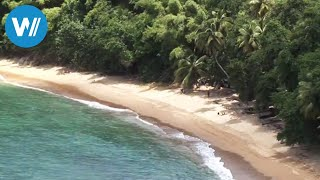 Tobago (travel-documentary from the season