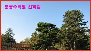 홍릉수목원 산책길
