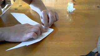 Improving The Omniwing Paper Airplane