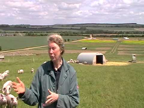 Crop Rotation at Helen Browning's Organic Farm