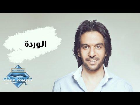 Bahaa Sultan - El Warda   بهاء سلطان - الوردة