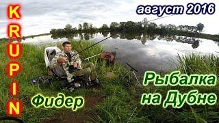 Риболовля на Дубні. Фідер. 17-18 серпня 2016 р.
