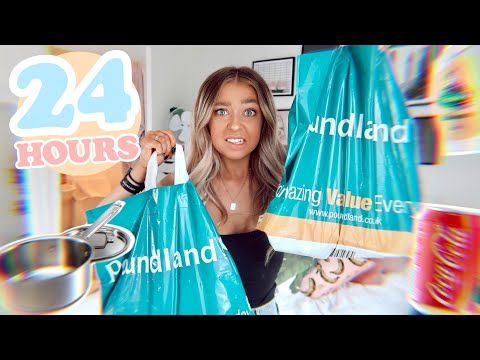 i-only-used-poundland-products-for-24-hours!