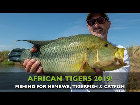 FISHING FOR TIGERFISH, NEMBWE AND HUGE CATFISH IN THE ZAMBEZI