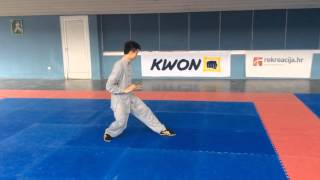 Wushu Yang Tai chi 24 form