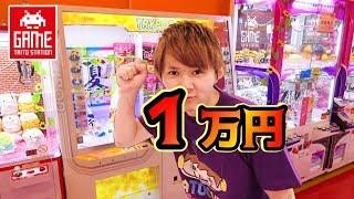 クレーンゲーム1万円で何個取れる!? in タイトーステーション