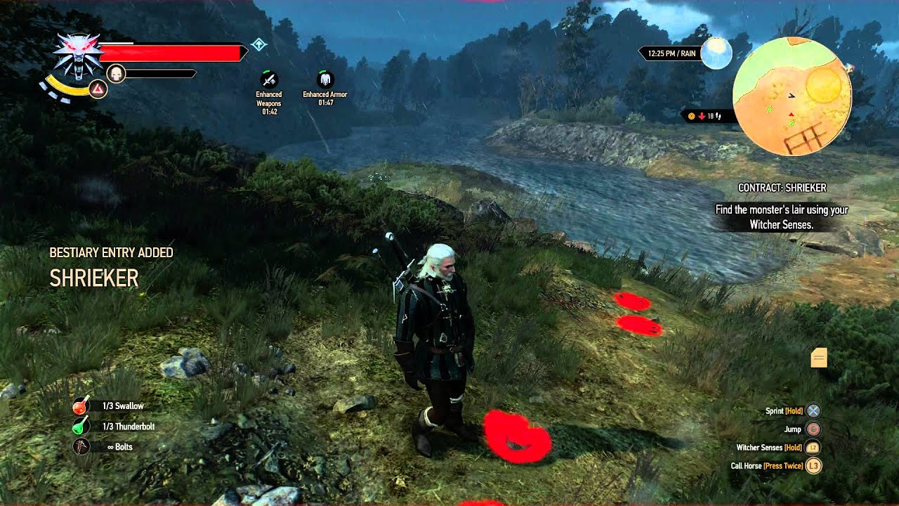 The Witcher 3: Wild Hunt - Contract Shrieker: Follow Blood