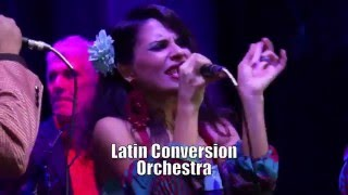 """September"" - Latin Conversion Orchestra (Earth Wind & Fire cover)"