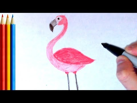 How To Draw Flamingo Step By Step Tutorial Youtube