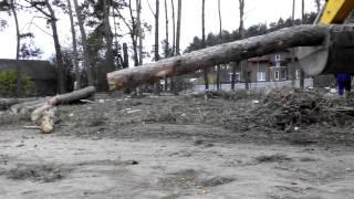 Расчистка территорий. (067)339-35-31.(Спиливание деревьев, расчистка территории от кустарника, вырубка поросли и корчевание пней, демонтаж здани..., 2014-10-30T19:39:37.000Z)