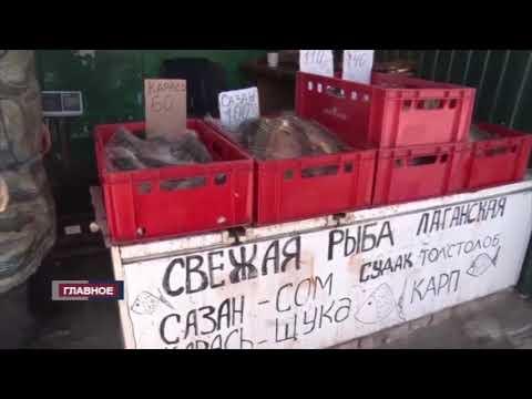 Несанционированные места торговли мясом были выявлены сотрудниками Управления Россельхознадзора