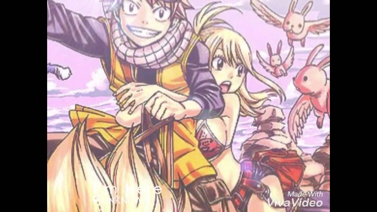 Fairy Tail Fanfiction End Revealed: Nalu Fanfiction