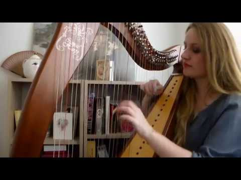 Lady Gaga - The Cure (Harp Cover)