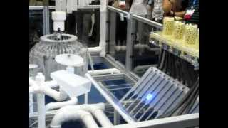 Rube-Goldberg'esque Music Machine (Powered by Intel and LabVIEW)