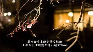 Sync/嵐 歌詞付き relaxing Music