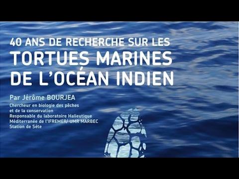 Planète Conférences - 40 ans de recherche sur les tortues marines de l'océan Indien