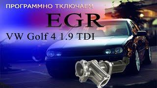 Программное отключение EGR | VW Golf 4  74 KW # CheckEngine #EGR #OffGear