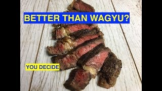 WAGYU    Vs   Cheap old dairy cow:  STEAK CHALLENGE teaser