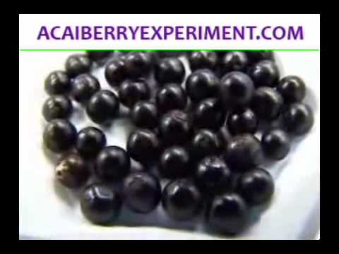 Acai Berry - The Miracle Fruit May Even Help Cure Cancer!