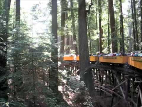 Society Dog Roaring Camp Steam Train Adventure