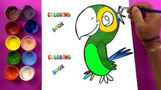 Learn Parrot Coloring Pages Colors