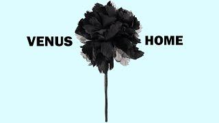Gambar cover 02 Venus - Utopia (Official Audio)