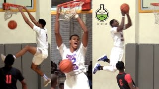 What COMPLETE DOMINATION LOOKS LIKE Feat. Dream Vision of adidas Gauntlet