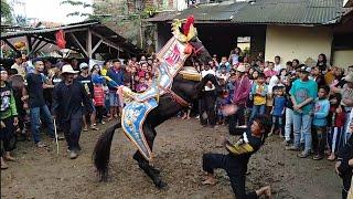 Download Video Kuda renggong - Atraksi kuda renggong di Bandung MP3 3GP MP4