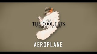 Red Hot Chili Peppers - Aeroplane - Cover (Lou's THE COOL CATS)
