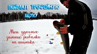 Поймал трофейную щуку Удачные зимние рыбалки на хищника