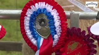 The Reeth Show 2018