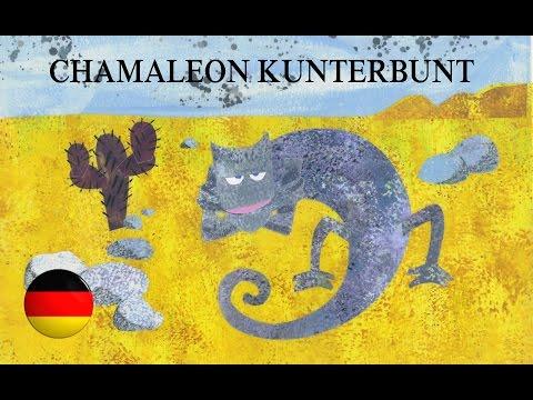 Chamaleon Kunterbunt