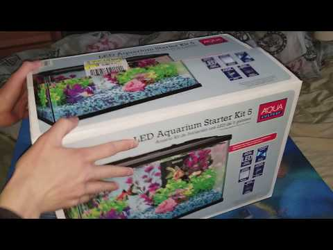 Walmart Aquaculture 5 Gallon Tank Kit Unboxing