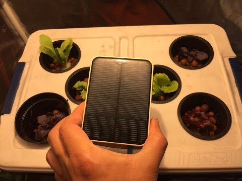 Solar Powered Hydroponic - Indoors