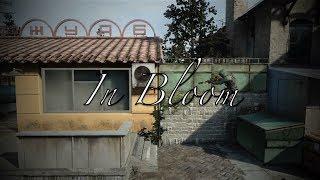 In Bloom - 3HE ft Daxhy