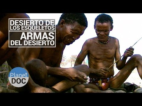 Desierto de los Esqueletos. Armas del Desierto | Tribus y Etnias - Planet Doc