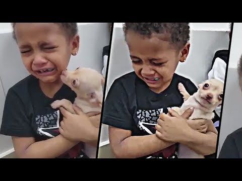 Baby Cry Over His New Cute Puppy Birthday Surprise *emotional*
