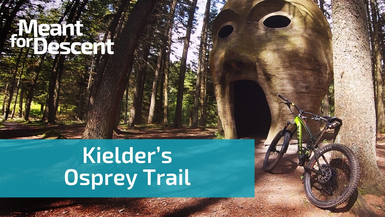Kielder's Osprey Trail | Blue Grade MTB Trail in Northumberland