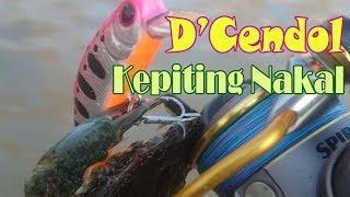 Ultralight fishing: Kepiting Nakal Nyangkut d'cendol fishing lure.