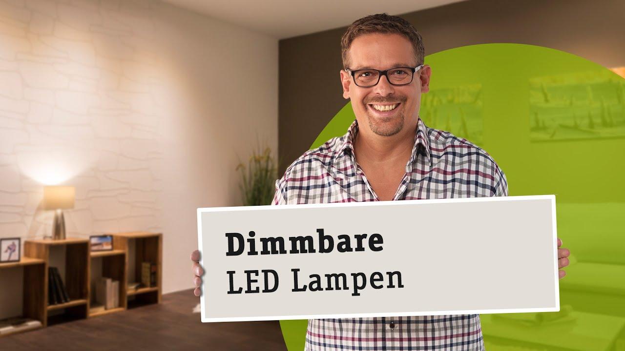 Dimmbare LED Lampen  die richtige Wahl von Leuchtmittel