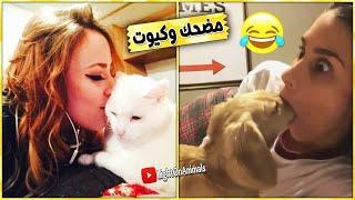 قطط وكلاب مضحكة جدا 😂 -اضحك حتى البكاء على القطط والكلاب (حيوانات مضحكة) #1