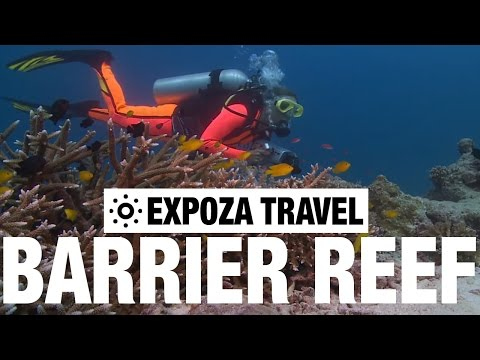 The Great Barrier Reef (Australia) Vacation Travel Wild Video Guide