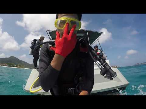 (Dive) Redang Island Underwater Clean Up and Coral Rescue Mission